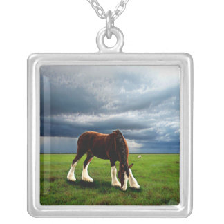 Clydesdale Storm Silver Plated Necklace