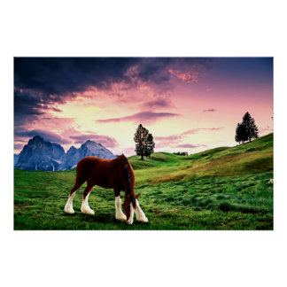 Clydesdale Sunset Poster