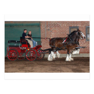 Clydesdales cart postcard