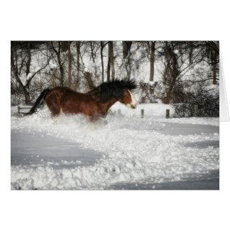 Clydesdale's Snowy Run Card
