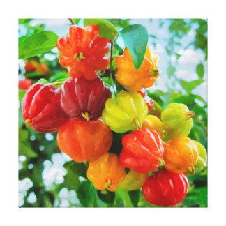 CM12135 - Pitanga, tropical fruit Canvas Print