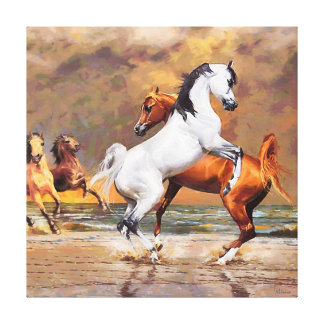 CM12147 - Horses, full elegance Canvas Print