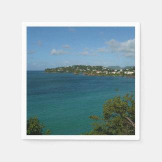 Coast of St. Lucia Caribbean Vacation Photo Paper Napkin