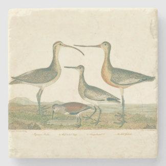 Coastal Antique Birds Audubon Marsh Stone Coaster