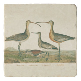 Coastal Antique Birds Audubon Marsh Trivet