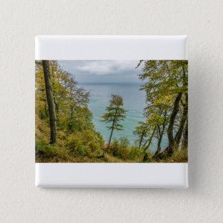 Coastal forest on the Baltic Sea coast 2 Inch Square Button