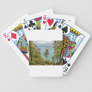 Coastal forest on the Baltic Sea coast Bicycle Playing Cards