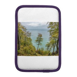 Coastal forest on the Baltic Sea coast iPad Mini Sleeve