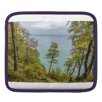 Coastal forest on the Baltic Sea coast iPad Sleeve