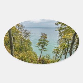 Coastal forest on the Baltic Sea coast Oval Sticker