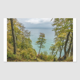 Coastal forest on the Baltic Sea coast Sticker
