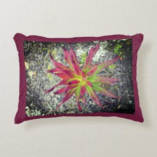Coastal Paintbrush Pillow