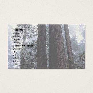 Coastal Redwoods, Lady Bird Johnson Grove, Califor Business Card
