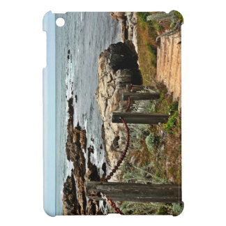 coastal steps zazzle iPad mini case