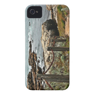 coastal steps zazzle iPhone 4 Case-Mate case