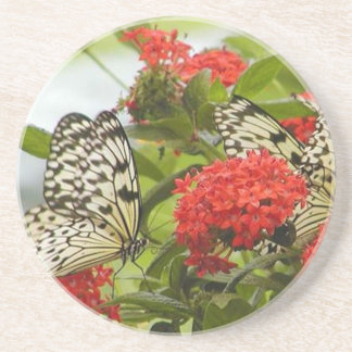 Coaster - Butterflies & Blossoms