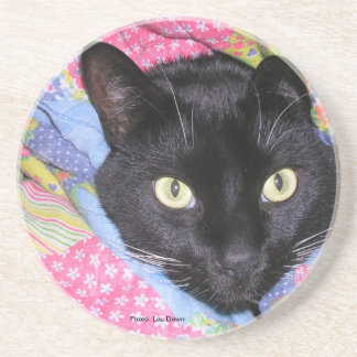 Coaster: Funny Cat wrapped in Blankets Coaster