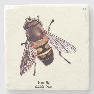 Coaster - Hoverfly Series #2 Eristalis tenax