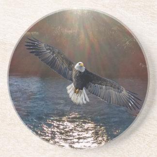 Coaster, Sandstone Eagle over river Coaster