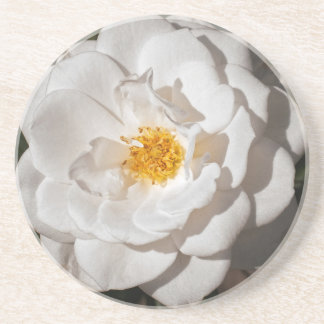 Coaster, Sandstone with a white rose Drink Coasters