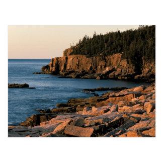 Coastline of Acadia National Park , Maine Postcard