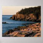 Coastline of Acadia National Park , Maine Poster