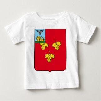 Coat_of_Arms_of_Krasnoye_rayon_(Belgorod_oblast).p Baby T-Shirt