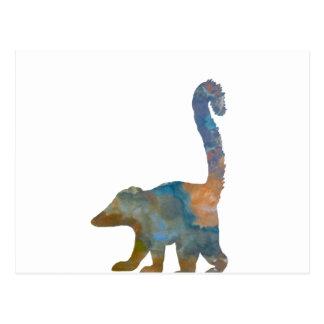 Coati Postcard