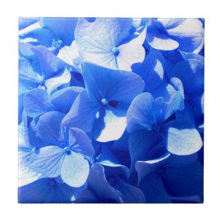 Cobalt Blue Hydrangea Tile