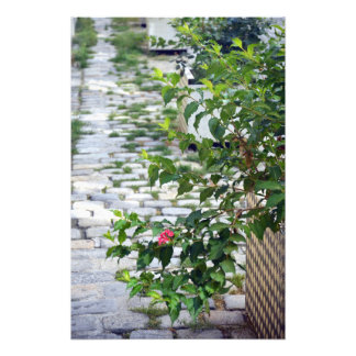 Cobblestone Flower Photo Print