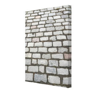 Cobblestone Walkway, Central Park, New York City Canvas Print