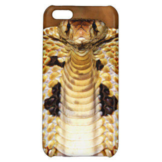 Cobra Snake Raised with Hood (Close Up) Case For iPhone 5C