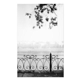 Cobweb morning photograph