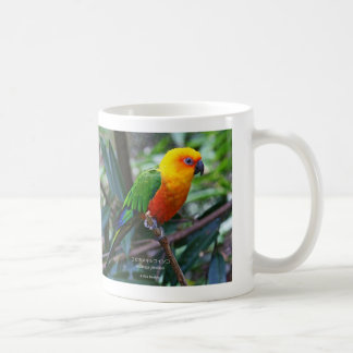 Coca ゙ nemekishikoinko, Sun Parakeet Coffee Mug