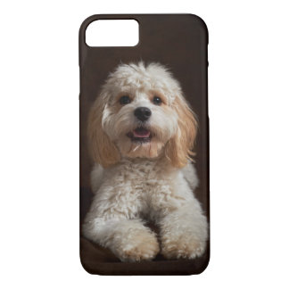 Cockapoo Portrait iPhone 8/7 Case