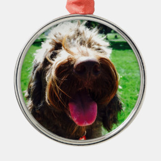 Cockapoo Silver-Colored Round Ornament