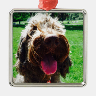 Cockapoo Silver-Colored Square Ornament