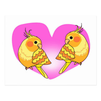 Cockatiel bird love on branch postcard