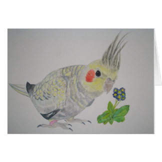 Cockatiel Parrot watercolor with flower Card