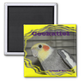 Cockatiel Pet Bird MAGNET