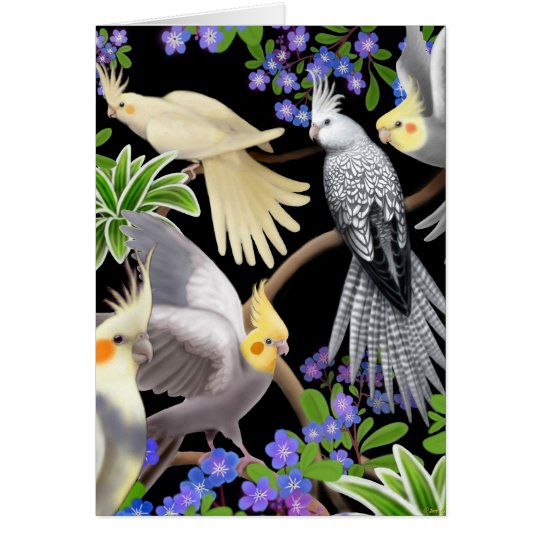 Cockatiels and Flowers Card