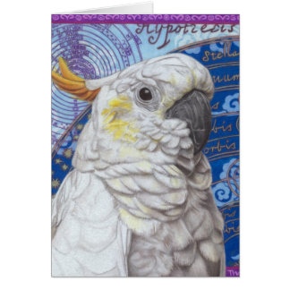 Cockatoo Cards