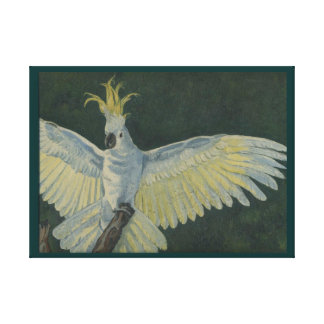 Cockatoo Stretched Canvas Print
