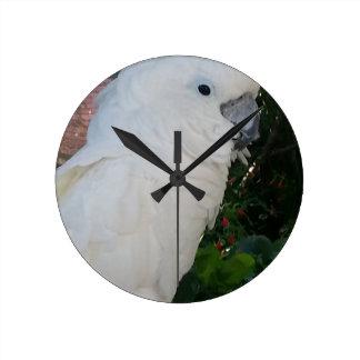 cockatoo white parrot bird clock