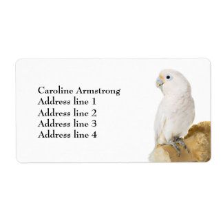 Cockatoo white parrot bird custom address labels