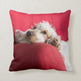 Cocker Spanial Throw Pillow
