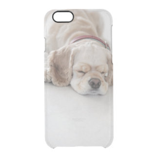 Cocker spaniel dog sleeping clear iPhone 6/6S case