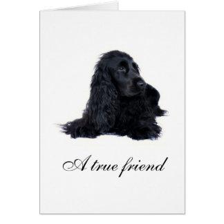 Cocker Spaniel friendship Card