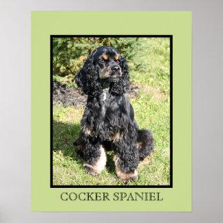 Cocker Spaniel Print