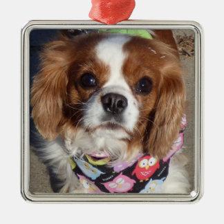 Cocker Spaniel Pup Ornament
